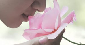 vágykeltő illatok